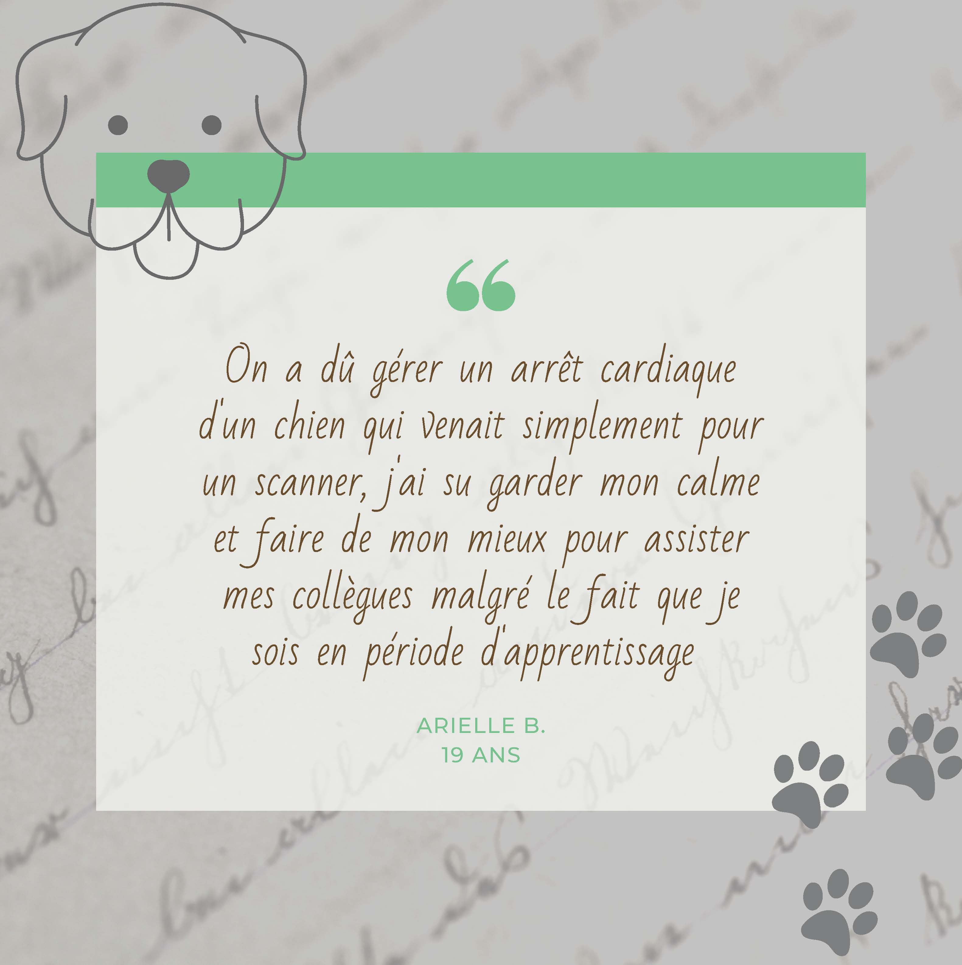 assistante veterinaire Rouen